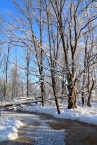 McHenry county in winter